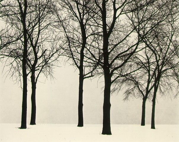 Harry Callahan - Chicago (1950)