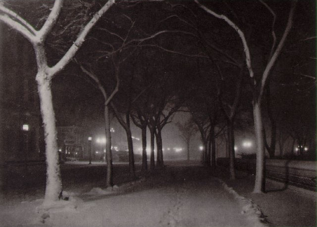 Stieglitz, Icy Night