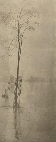 Stieglitz, Spring Showers