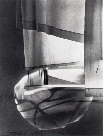 Windowsill Daydreaming - Photograph by Minor White
